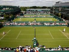 Courts at Wimbledon Tennis Championships