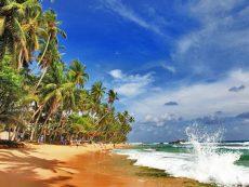 Сёрфинг Шри Ланка (1)