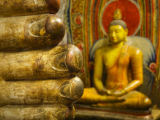 Detail of Toes Belonging to a Reclining Buddha