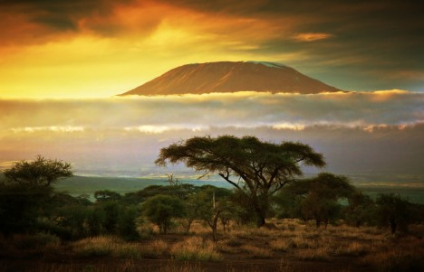 kilimanjaro_and_clouds_line_at_sunset-1024x683