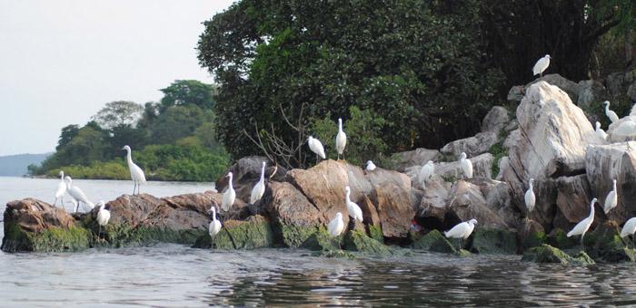национальный парк рубонда