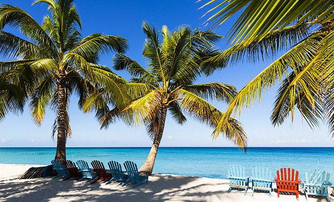 Beach chairs under coconut palm trees on beach by turquoise water, Parque Nacional del Este, Dominican Republic, Caribbean