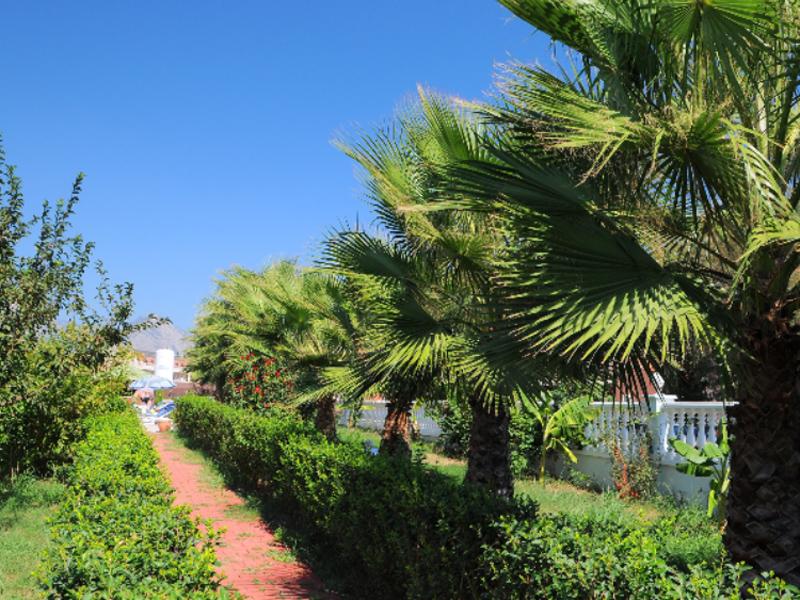 Adalin Resort Hotel ТурцияКемер_8