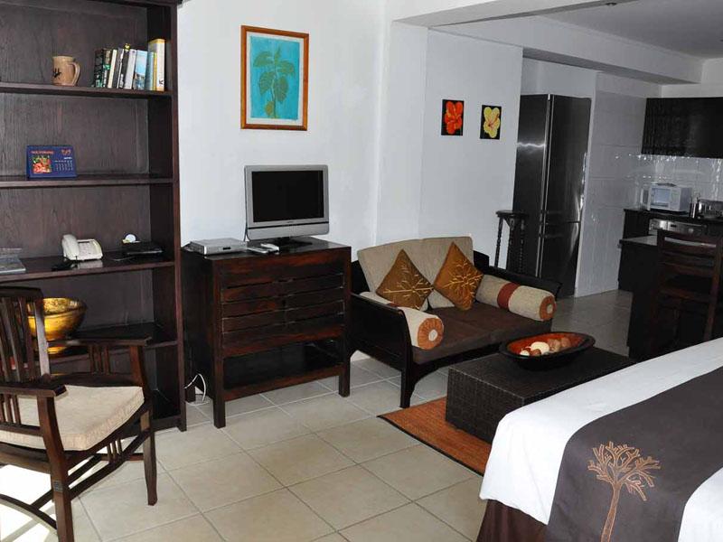 1 Bedroom Studio Apartment (5)
