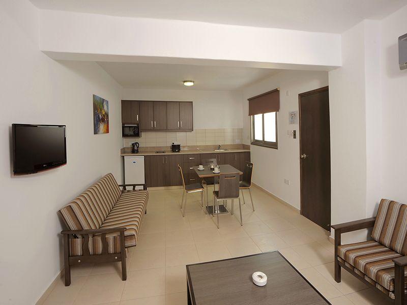 1BDR APARTMENT (living room & kitchen)
