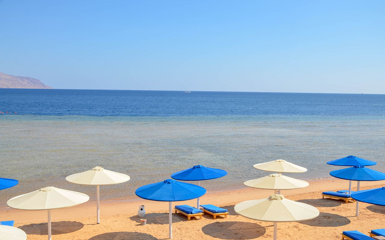 3Albatros Palace Resort Sharm El Sheikh (2)