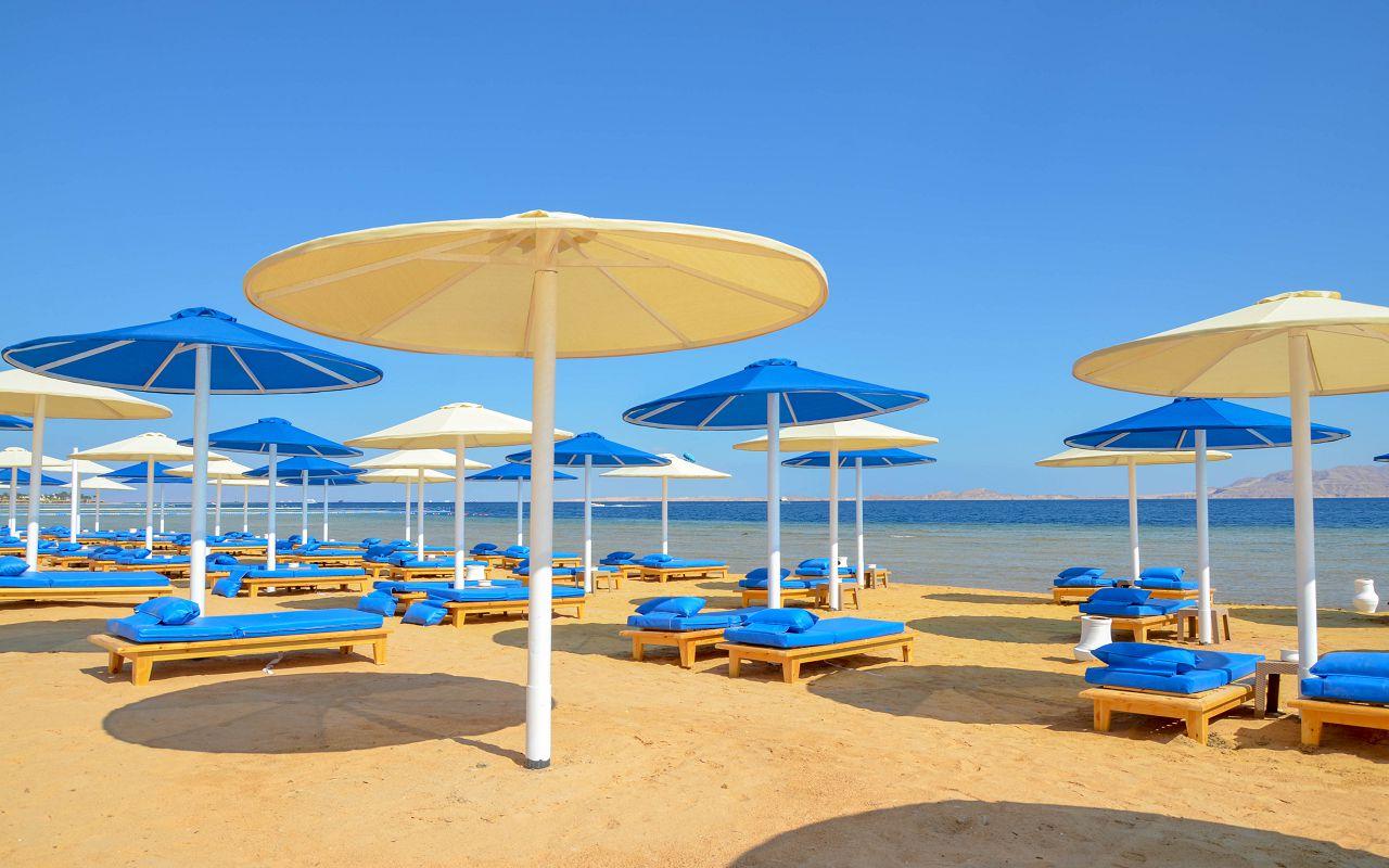 3Albatros Palace Resort Sharm El Sheikh (3)