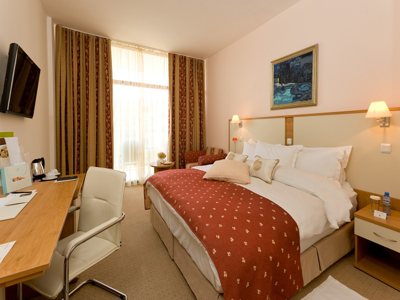 8. DoubleTree King Guest Room Park View
