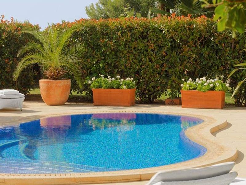 Blue Oasis Suite3