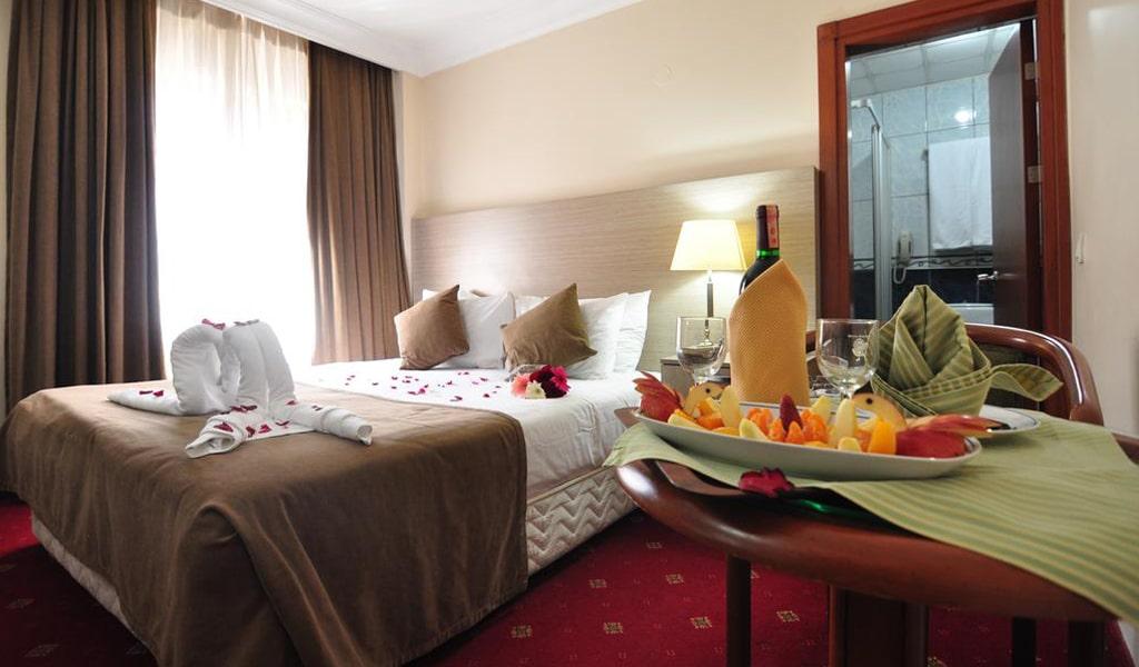 Buyuk Sahinler Hotel (10)