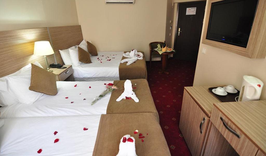Buyuk Sahinler Hotel (14)
