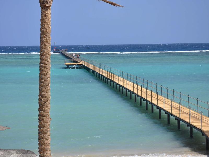 Elphistone Resort Marsa Alam-35