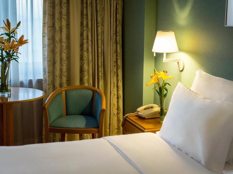 Hotel Sana Metropolitan (29)
