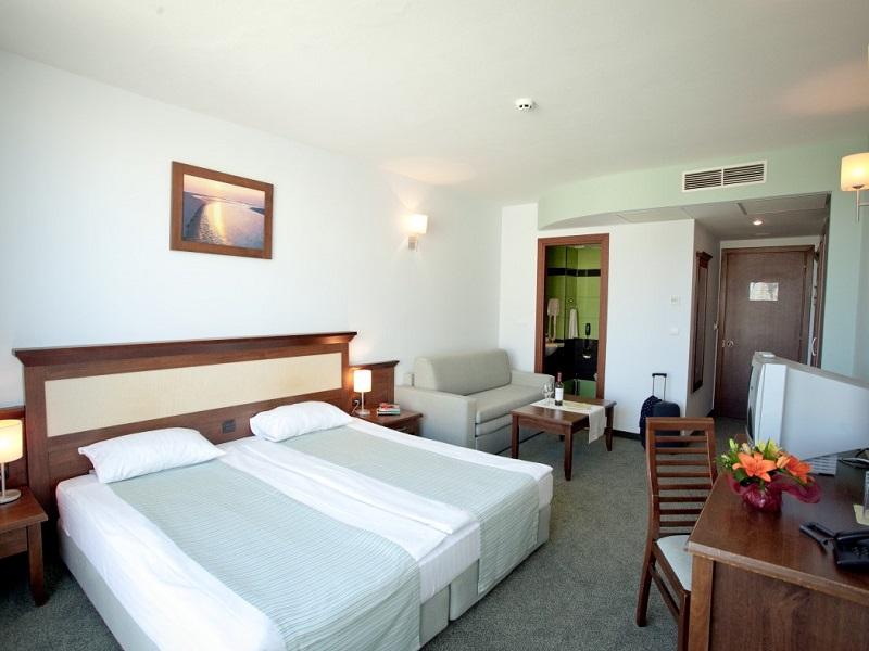 Lion Sunny Beach Room 2 (Medium)