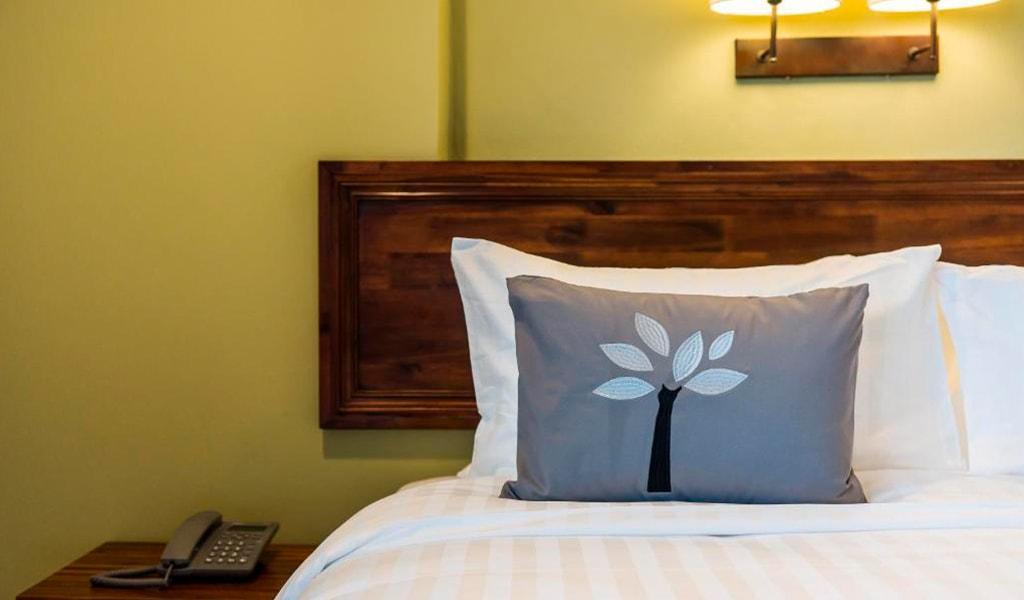 Olive Tree Hotel (29)