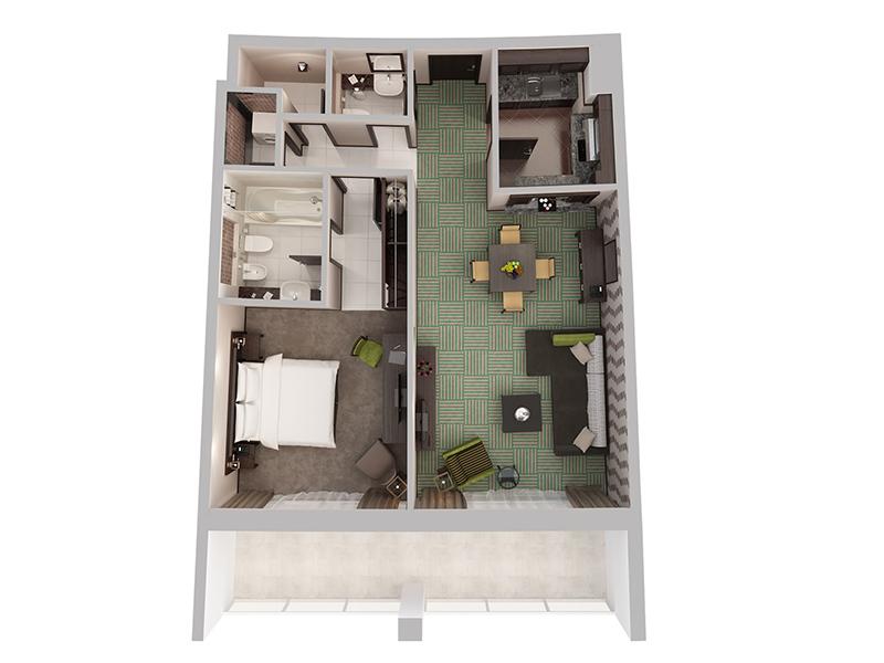 One Bedroom Apartment11