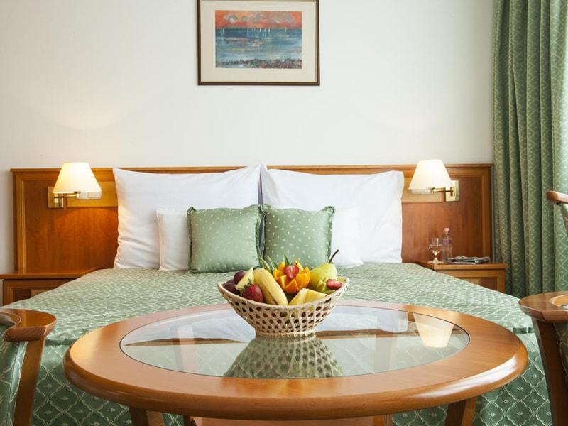 Palace Hotel Heviz (21)