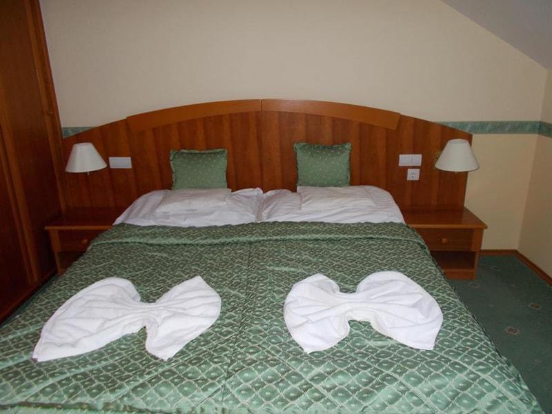 Palace Hotel Heviz (5)
