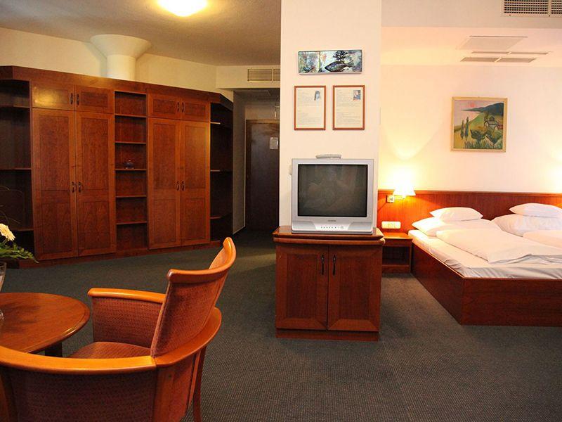 Panorama Suite8