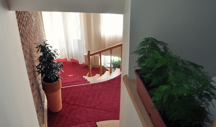 Single Room Shine on Rustaveli2