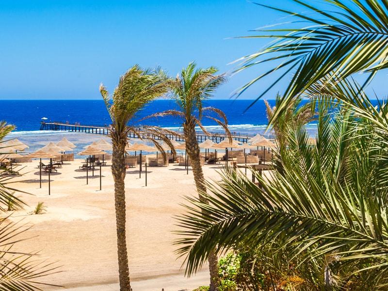Siva Port Ghalib - Port Ghalib Resort (34)