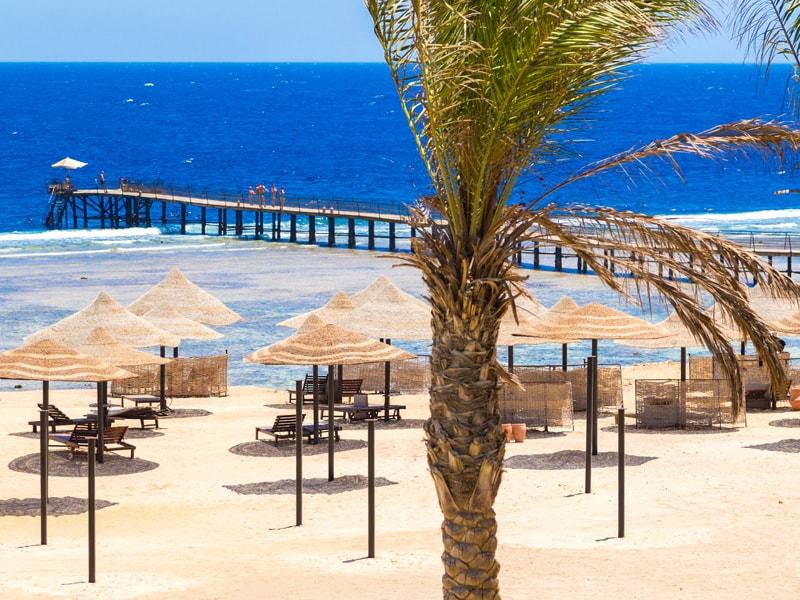 Siva Port Ghalib - Port Ghalib Resort (35)