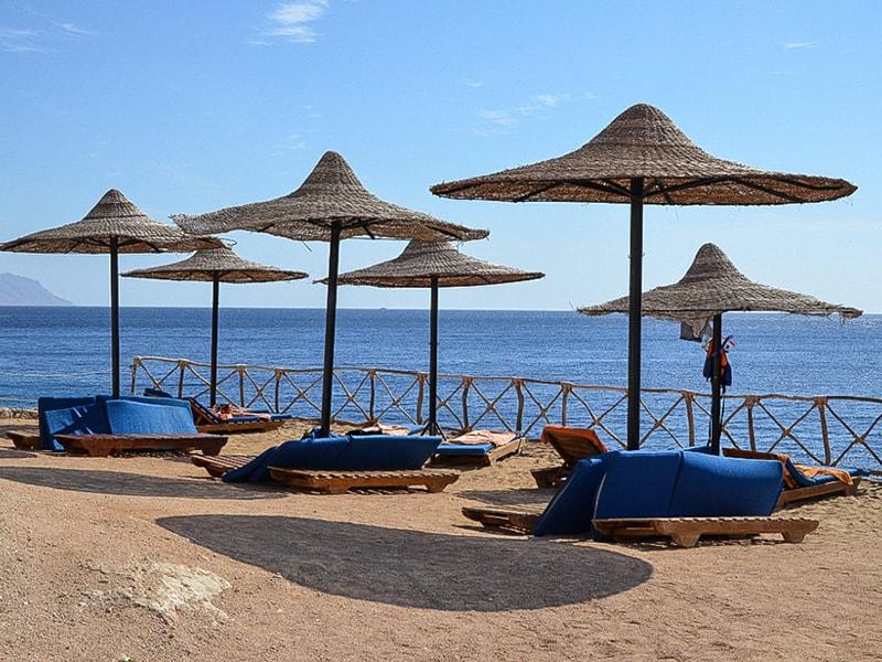 Siva Sharm (24)
