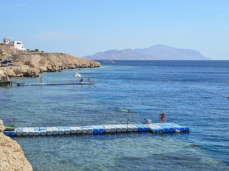 Siva Sharm (26)