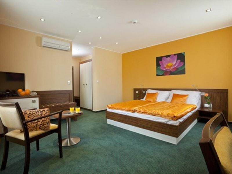 Viktor Hotel (10)