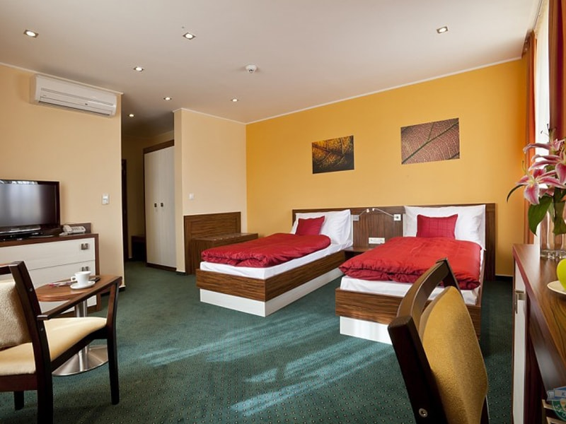 Viktor Hotel (15)