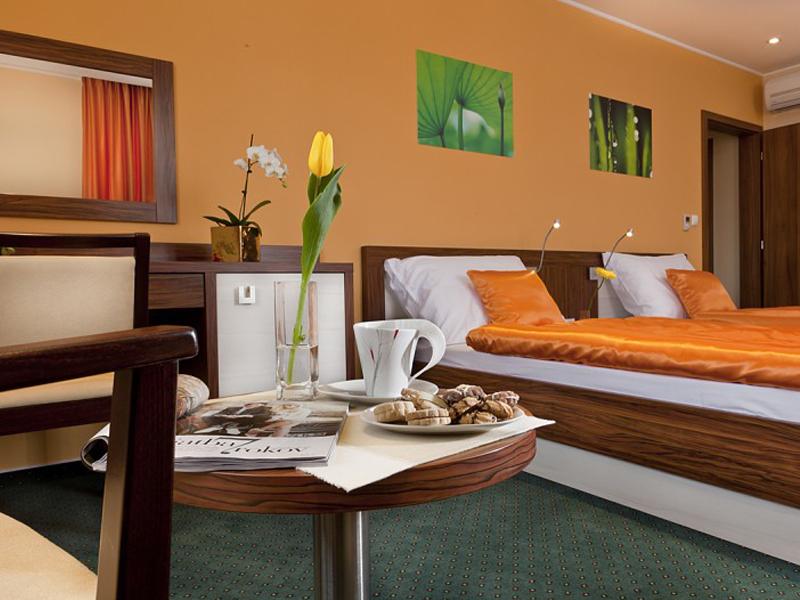 Viktor Hotel (44)