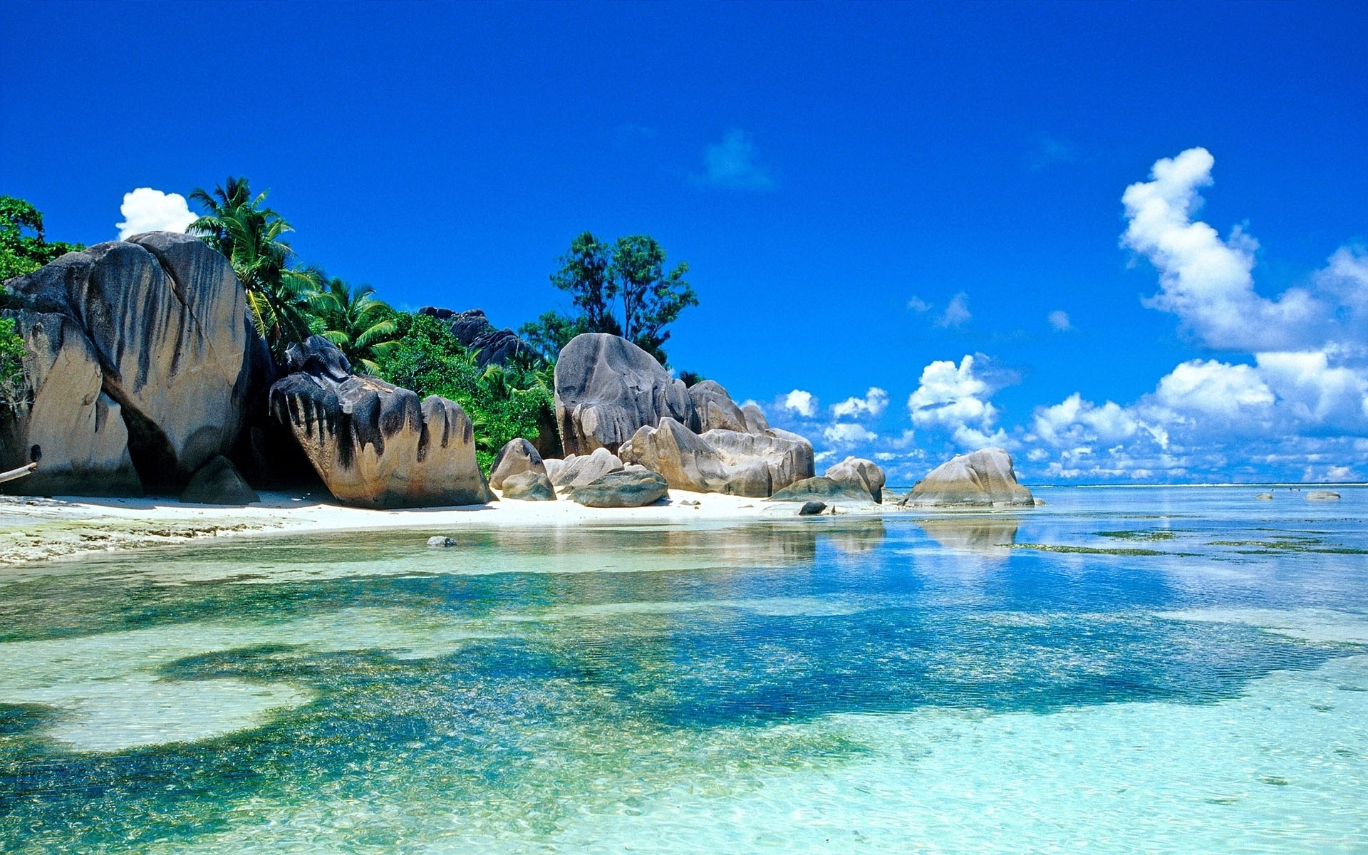 Купить остров на сейшелах цены где дешевле купить жилье в европе