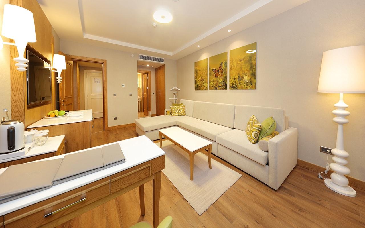 Deluxe Suite Living Room-min