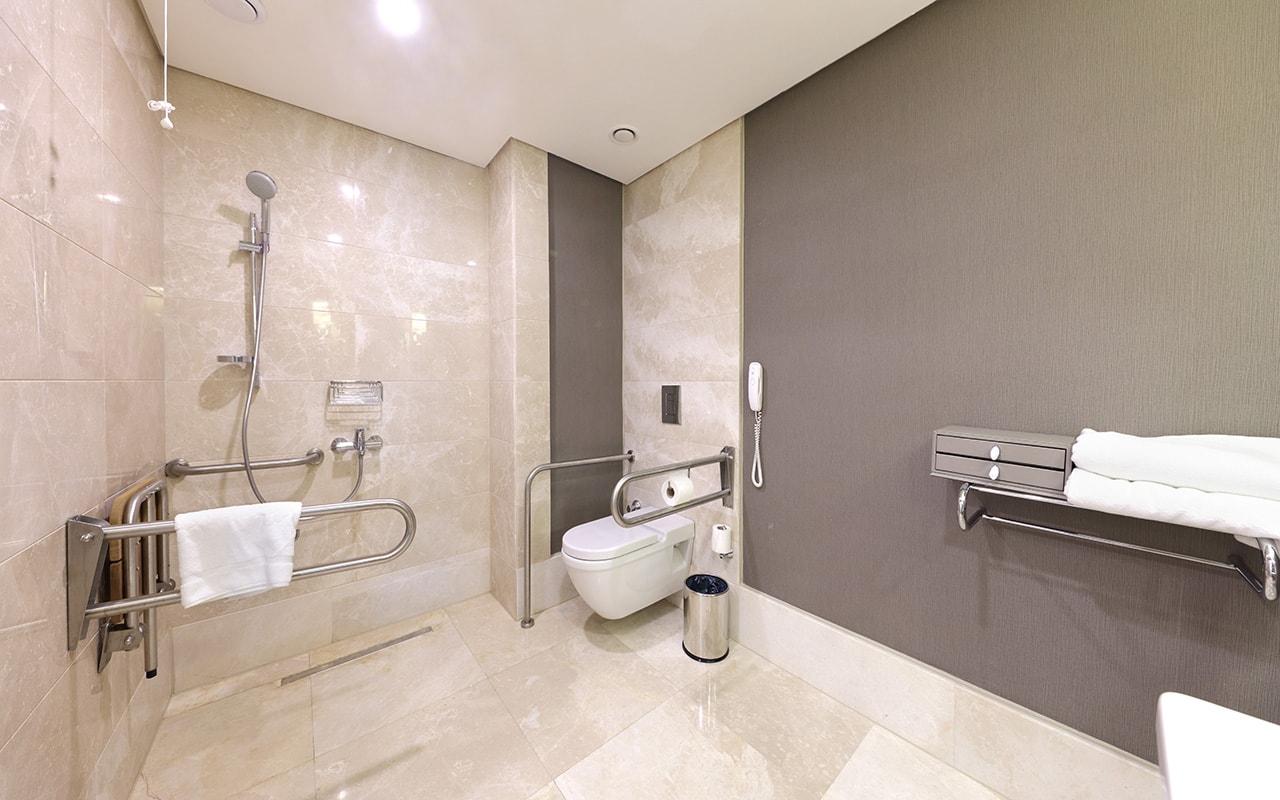 Handicap Bathroom 2-min