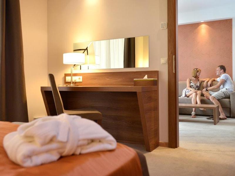 Imola Hotel Platan (4)