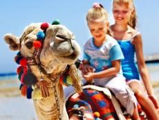 ешипет kids go free (2)
