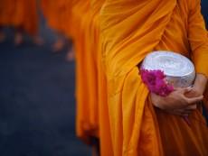 Thai Buddhist Monks in Saffron Robes