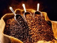 10_coffee_0001