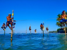 Sri Lanka, Weligama, Stilt fishermen on the coast