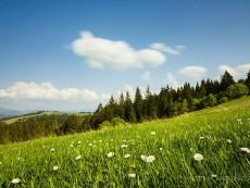 Карпаты – ваши места силы и вдохновения! (2)