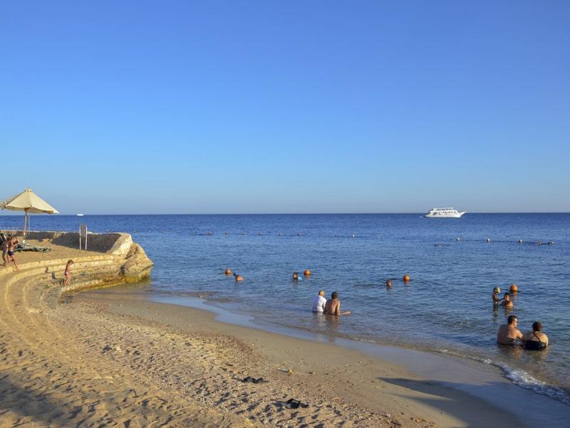 Reef Oasis Blue Bay (4)