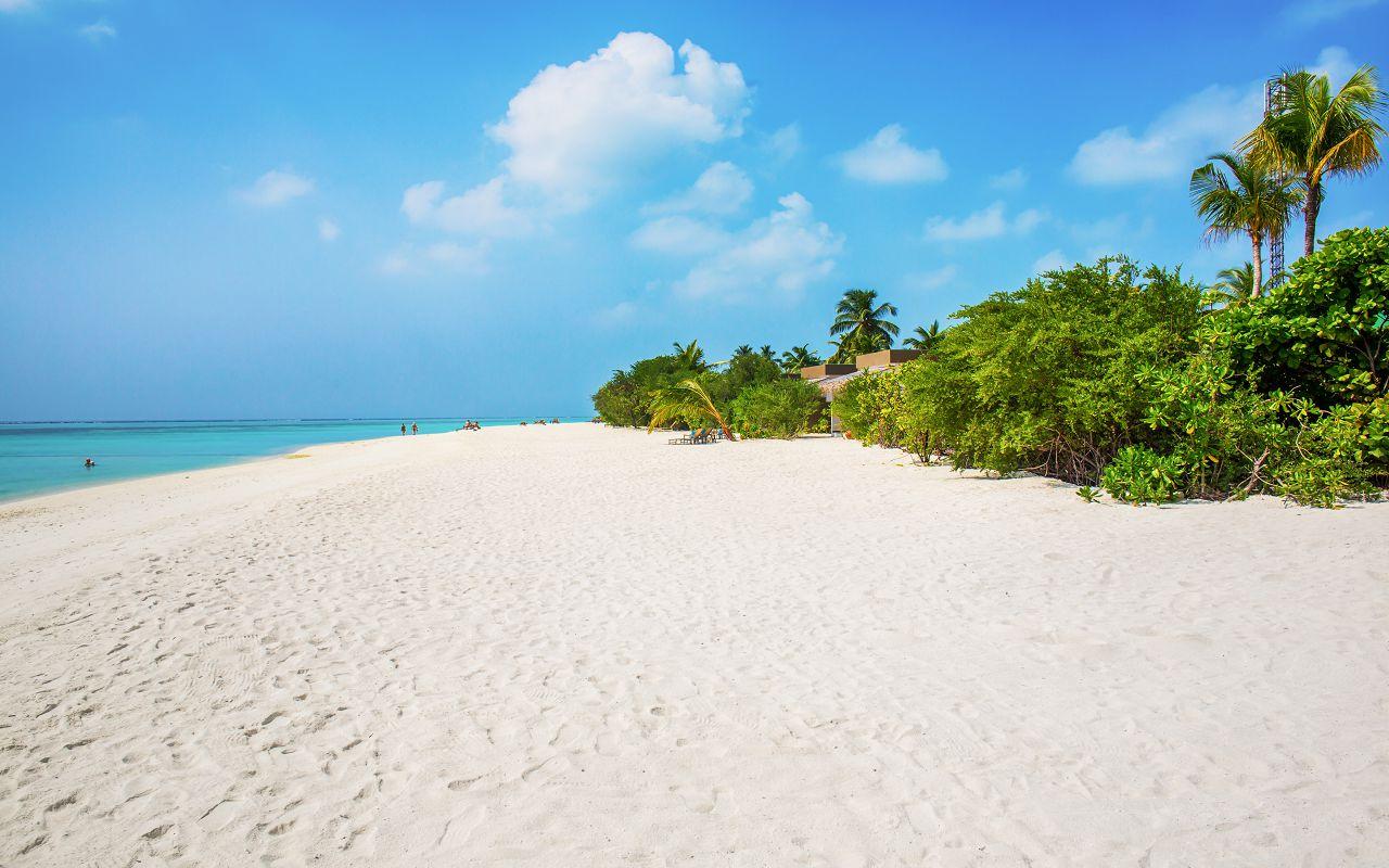 6Cocoon Maldives (3)