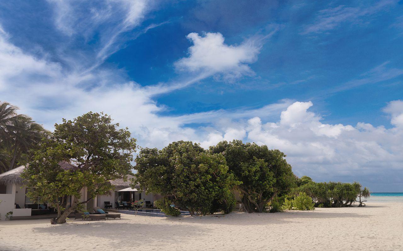 Cocoon Suite Beach