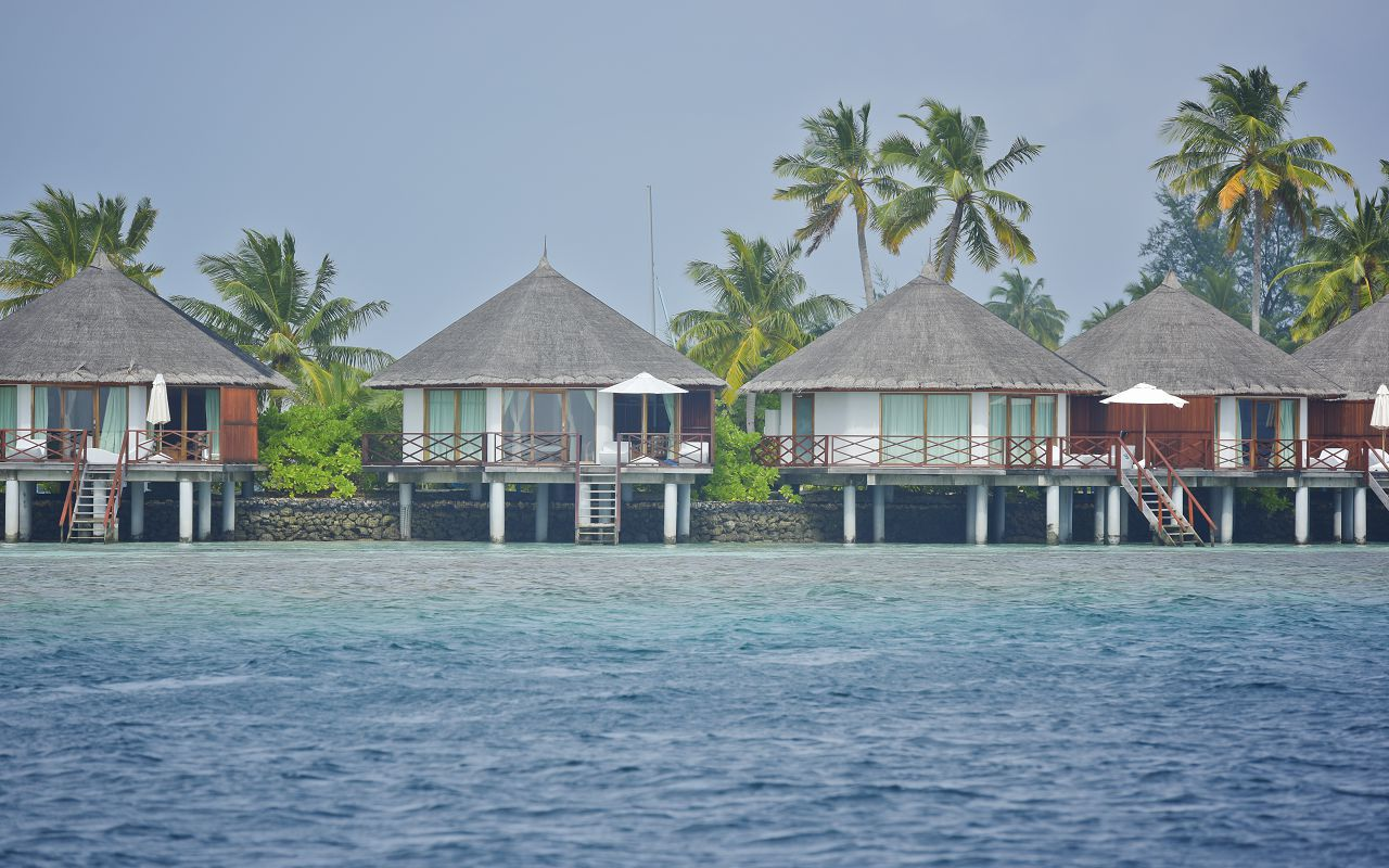 SFI-HRES-Safari_Island_Semi_Water_Bungalow2