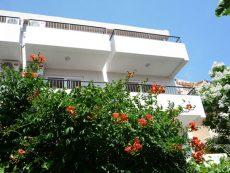 Отели черногория (5)
