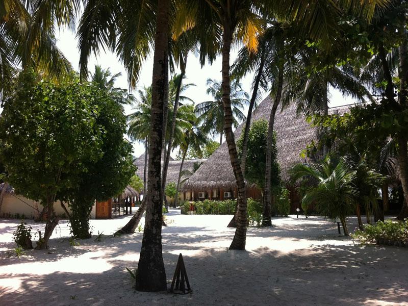 4Alimatha Aquatic Resort (6)