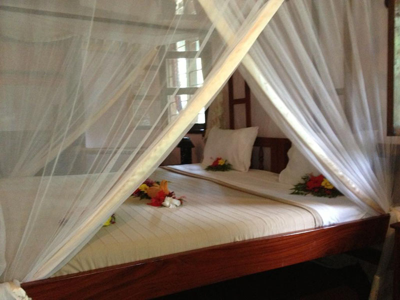 4Mangrove Lodge (11)