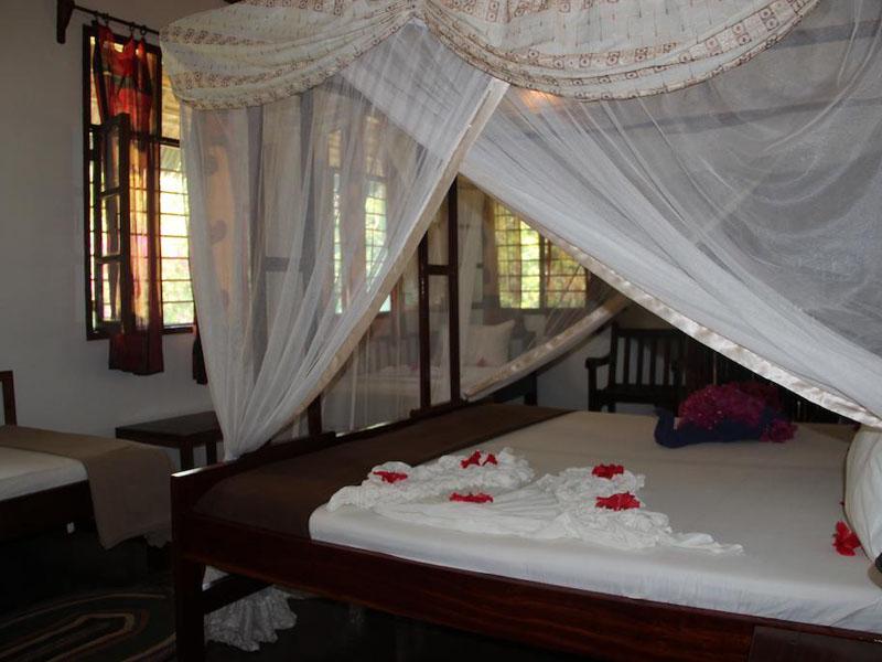 4Mangrove Lodge (5)