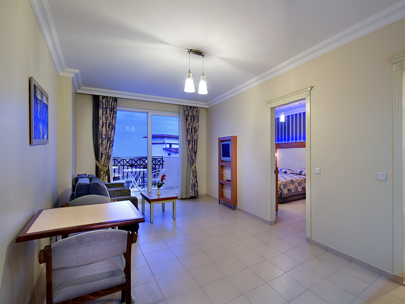 1+1 suite room living room