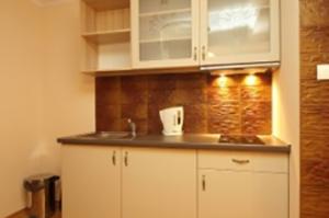 Apartament Kominkowy (9)